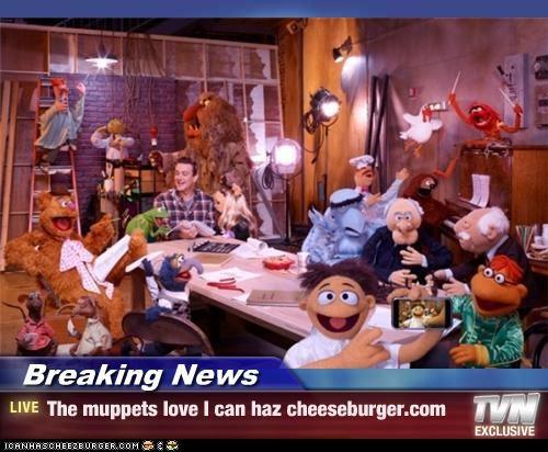 Cheezburger Image 4394931712