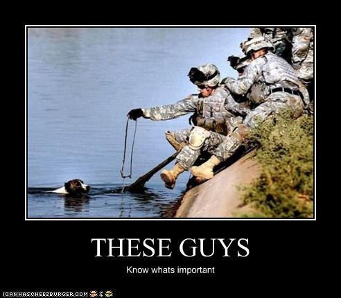 aww dogs kind military rescue soldiers - 4395029248