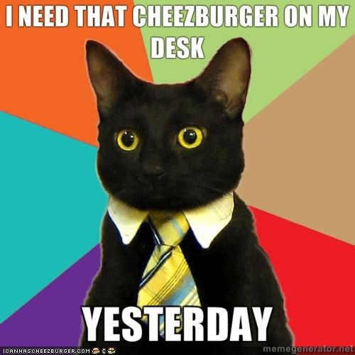 business Business Cat cheezburger jobs management meme Memes middle management tie work - 4395072512