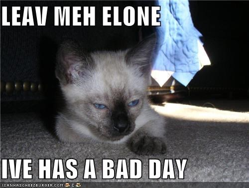 LEAV MEH ELONE  IVE HAS A BAD DAY
