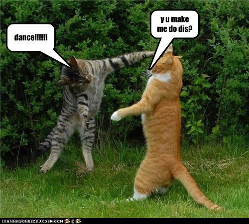 dance!!!!!! y u make me do dis?