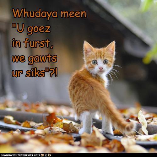 "Whudaya meen ""U goez in furst, we gawts ur siks""?!"