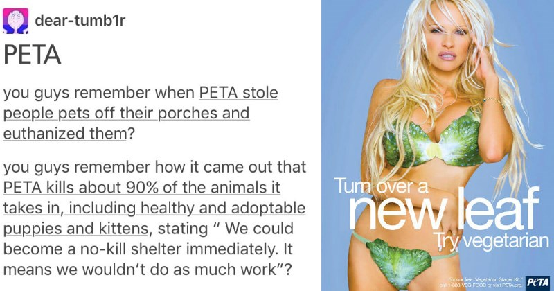 Tumblr User Reminds Us All That PETA is the F*cking Worst