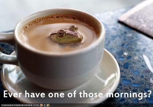 awful bad caption captioned coffee do not want frog horrible mornings one one of those peeking