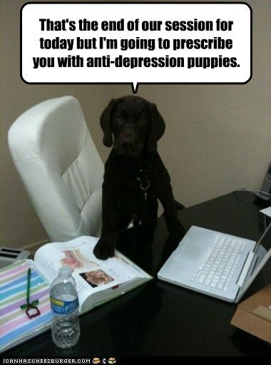 anti depressant,end,labrador,prescribing,prescription,psychiatrist,puppies,puppy,session,therapy
