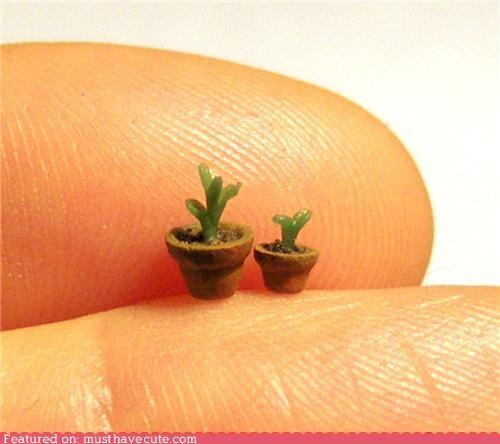 fimo miniature plant pots tiny - 4398214144