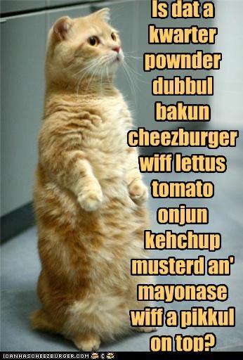 Cheezburger Image 4399235072
