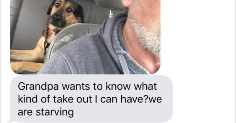 a funny dog story