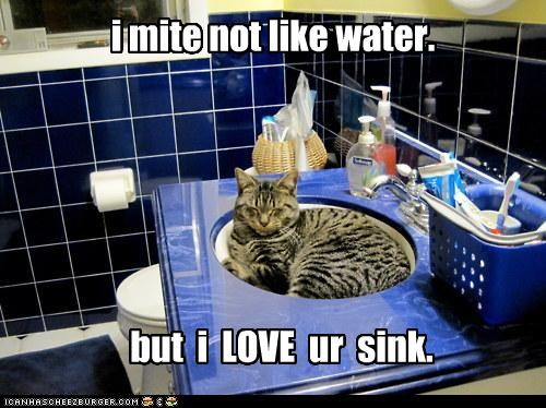 i mite not like water. but i LOVE ur sink.