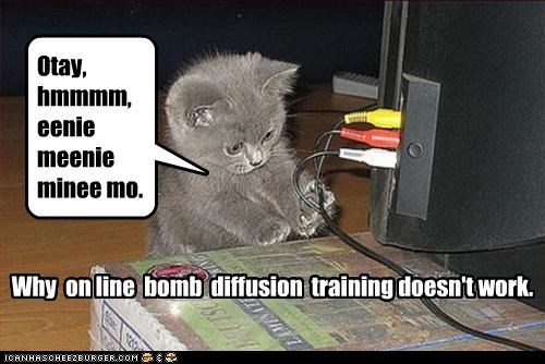 Why on line bomb diffusion training doesn't work. Otay, hmmmm, eenie meenie minee mo.
