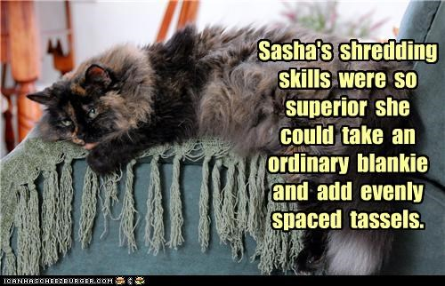 Sasha's  shredding skills  were  so  superior  she could  take  an ordinary  blankie and  add  evenly spaced  tassels.