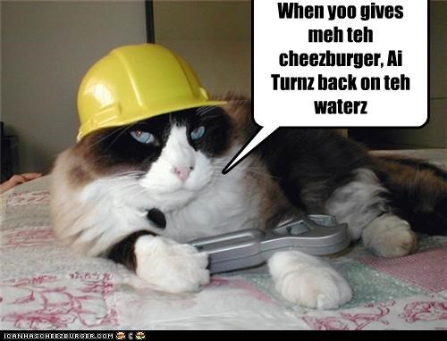Cheezburger Image 4401611008