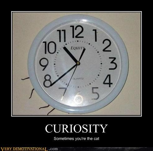 bad idea,spider,curiosity,clock