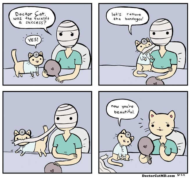 webcomics of cats and feline stuff