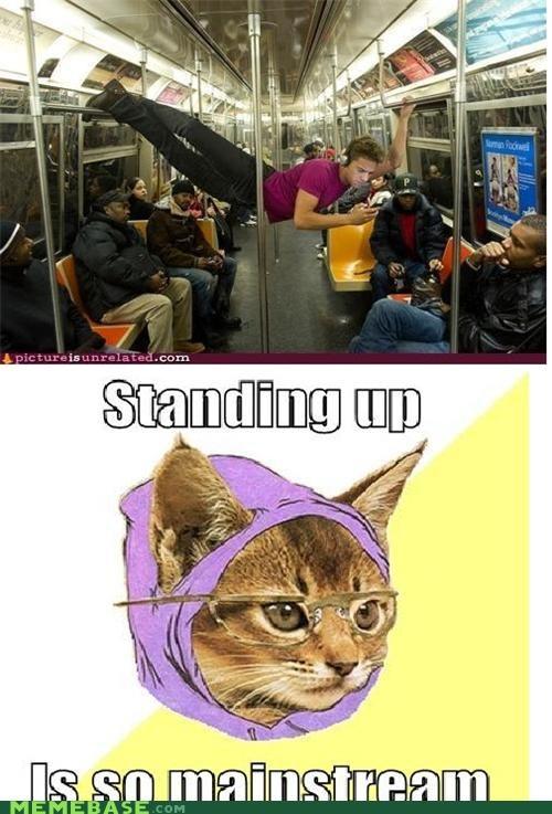 hipster Hipster Kitty public transportation - 4404260864