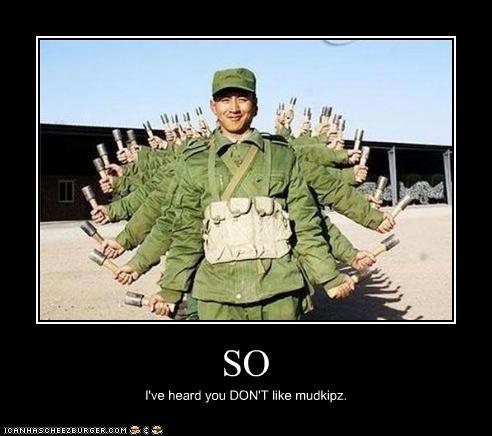SO I've heard you DON'T like mudkipz.
