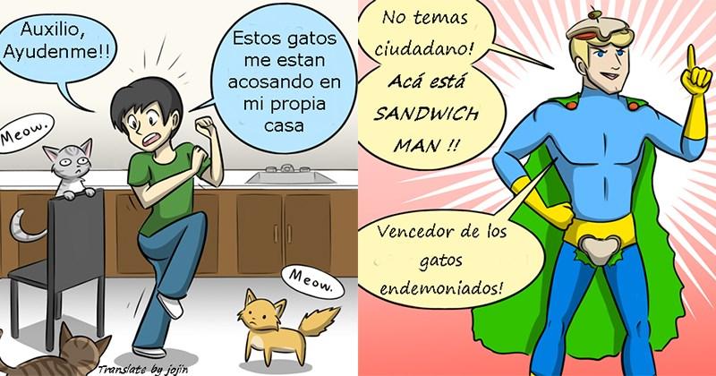 gatos hambre gif