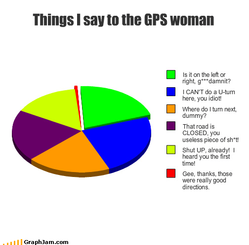 Things I say to the GPS woman