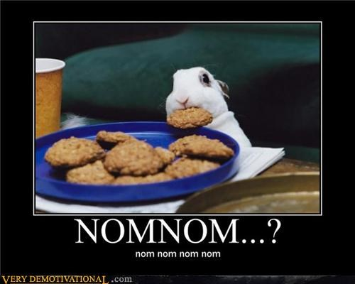 noms,rabbit,cookies