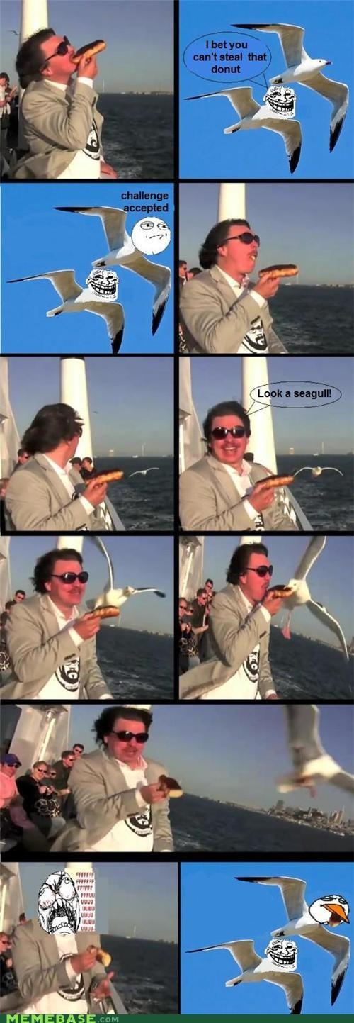 donuts,seagulls,troll face