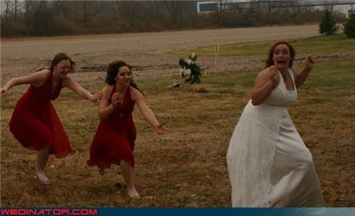 bride bride being chased by bridesmaids crazy bride picture Crazy Brides fashion is my passion funny bride picture funny bridesmaids picture funny wedding photos miscellaneous-oops run-bride-run running bride scared bride surprise wedding party wtf