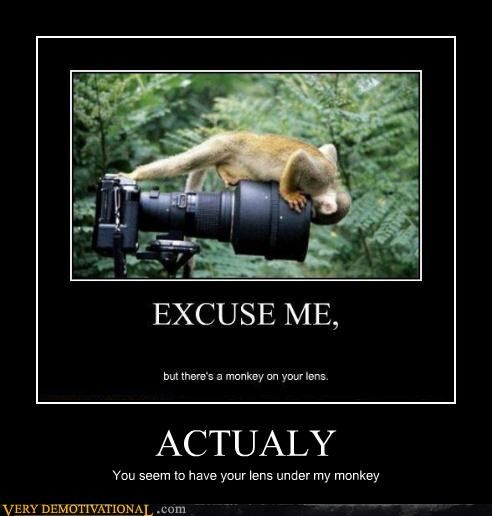 ACTUALY You seem to have your lens under my monkey