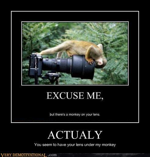 camera actually monkey - 4409332736