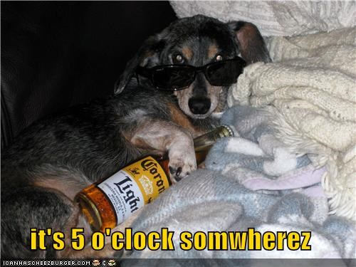 5 5-oclock beer dachshund drink drinking early excuse glasses Hall of Fame relaxing saying somewhere starting sunglasses time