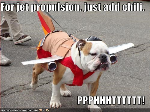 add bulldog chili costume crass dressed up Hall of Fame instructions jet propulsion simple - 4409545216
