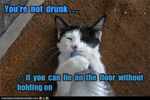 You're not drunk . . . . . . if you can lie on the floor without holding on