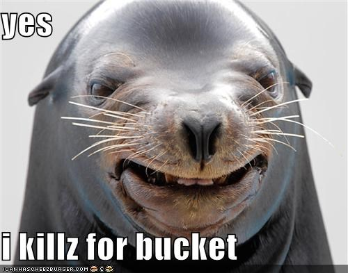 animals,bucket,critters,kill,murder,sealion