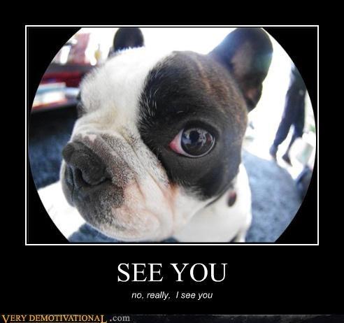 SEE YOU no, really, I see you