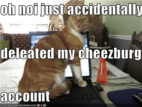 Cheezburger Image 4412174592