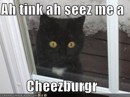 Cheezburger Image 4412241664