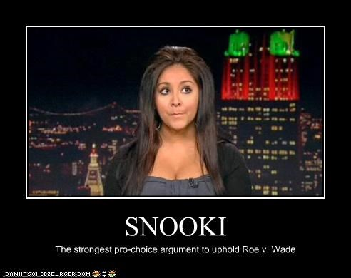celeb demotivational funny jersey shore reality tv snooki TV - 4412486656