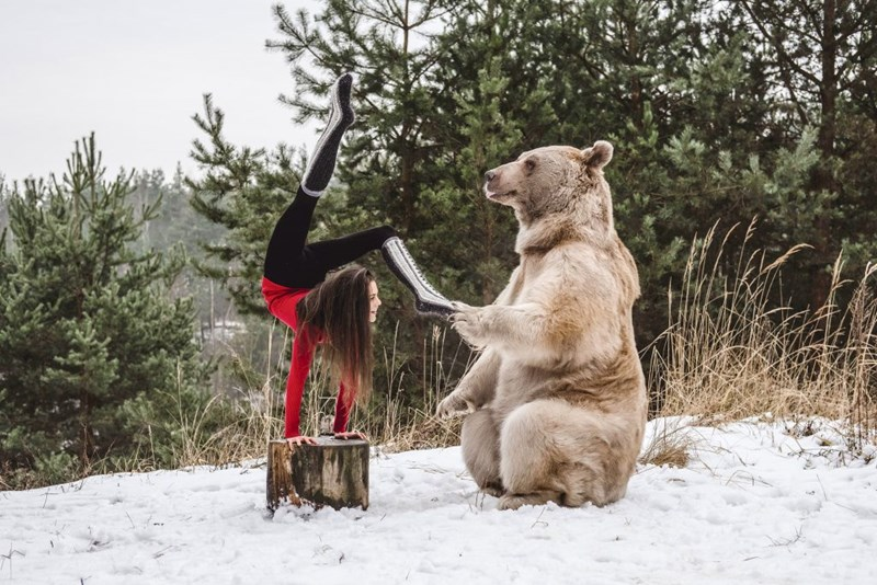 an article of a girl posing with a bear