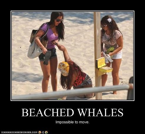 demotivational,jersey shore,JWoww,snooki,TV