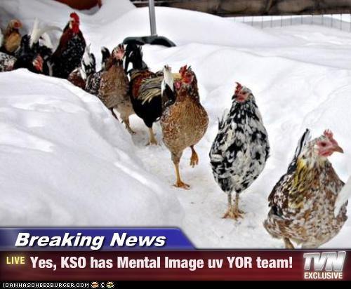Cheezburger Image 4414243840