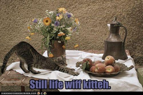 Cheezburger Image 4414262528