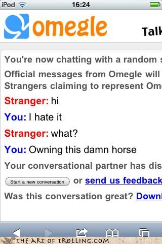 hate,i own a horse,lol,Omegle,OMG MODS STOP POSTING THIS QQQQQQQQ