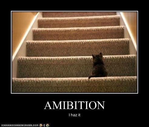 AMIBITION I haz it