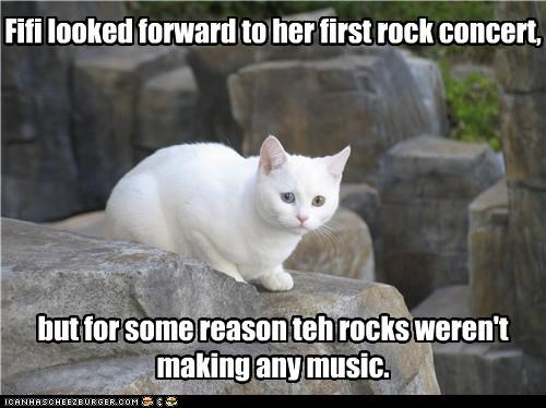 Fifi looked forward to her first rock concert,        but for some reason teh rocks weren't making any music.