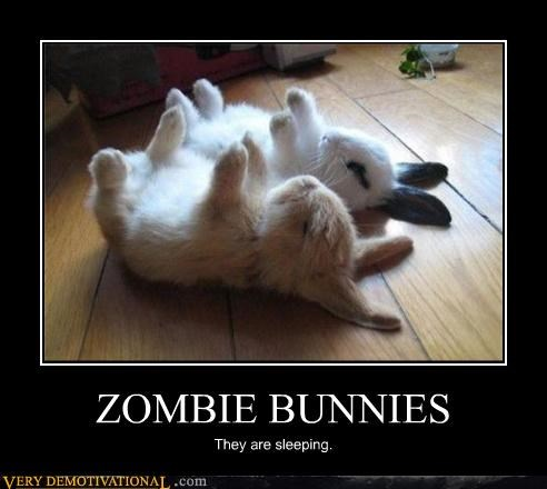 animals bunnies cute zombie - 4415376384