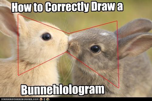 bunnies bunny caption captioned correctly How To instructions kissing rabbit rabbits shape - 4415387904