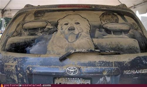 amazing,art,cars,dirty,windows,wtf
