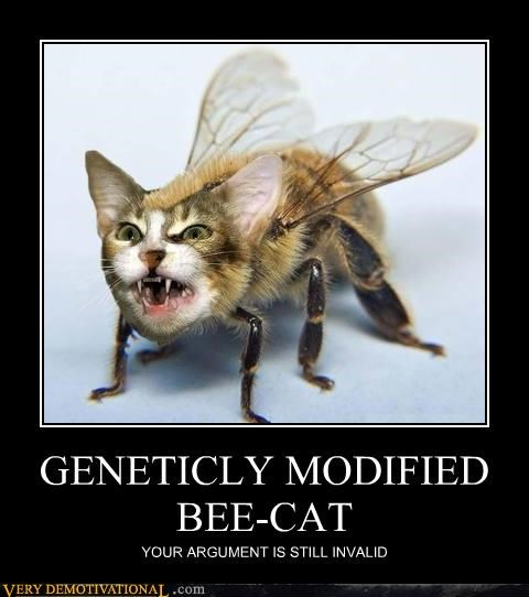bee,cat,Genetics,Invalid Argument,modified,wtf