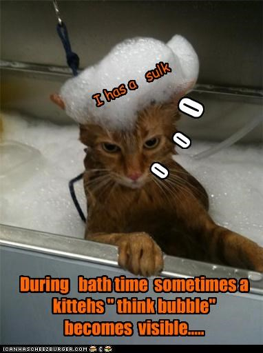 """0 0 0 I has a sulk During bath time sometimes a kittehs """" think bubble"""" becomes visible....."""