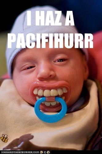 baby bee derp pacifier sucking teeth - 4416484352