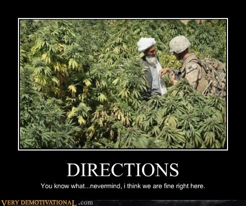 directions,drugs,soldier,weed