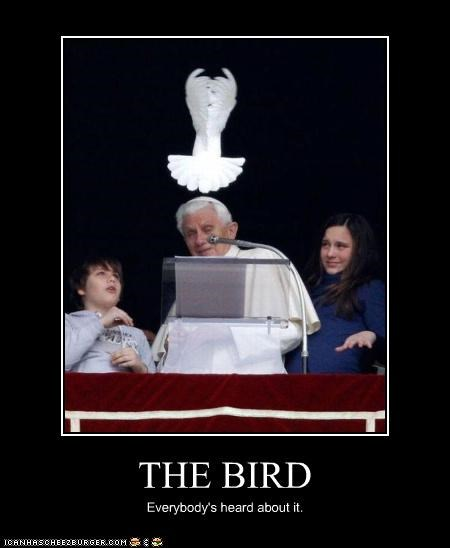 bird,bird is the word,catholics,dove,pope,Pope Benedict XVI,religion,song